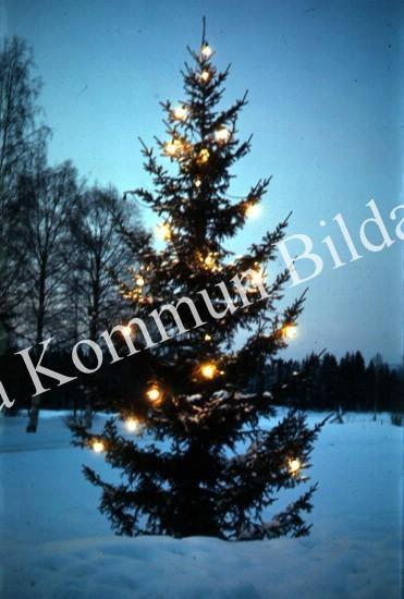 Okb_Has470.jpg