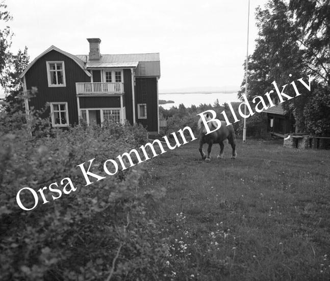 Okb_9710.jpg
