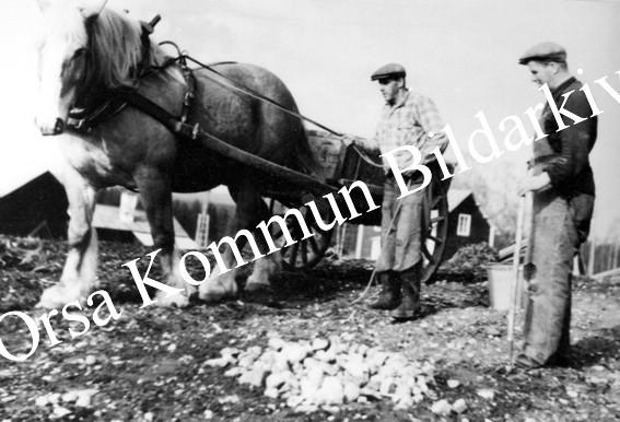 Okb_26835.jpg