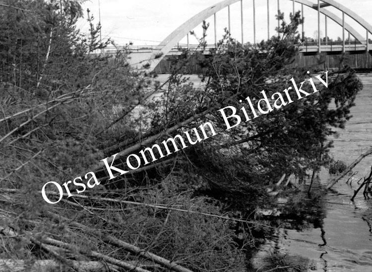 Okb_5990.jpg
