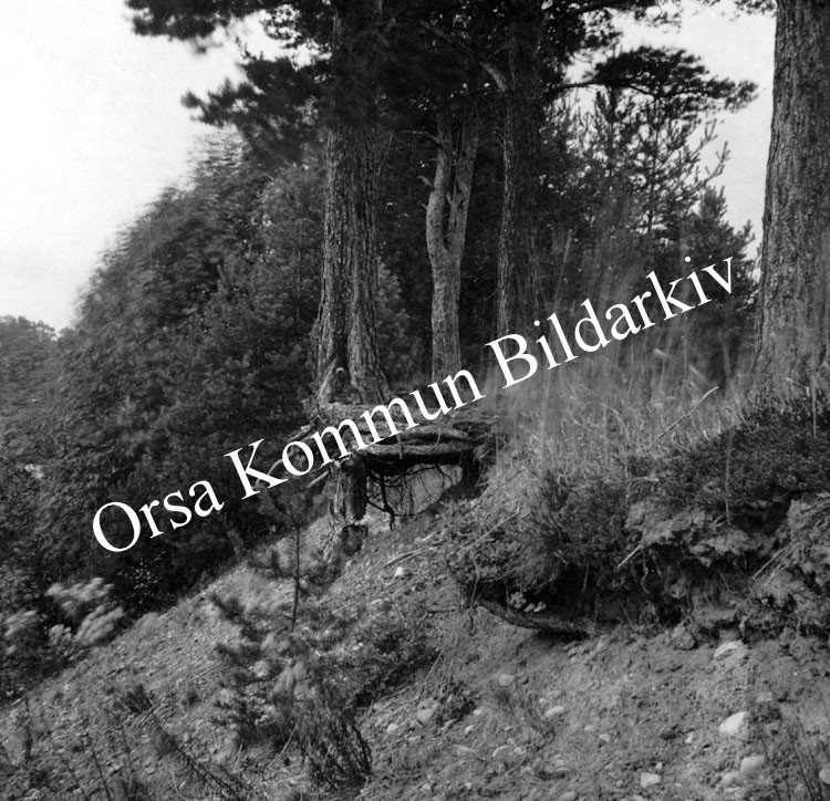 Okb_1910.jpg