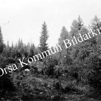 Okb_5744.jpg