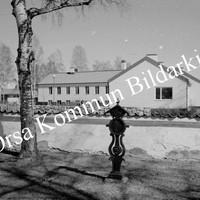 Okb_6095.jpg