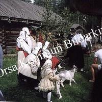 Okb_BN521.jpg