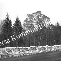 Okb_5948.jpg