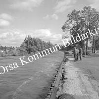 Okb_9037.jpg