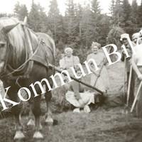 Okb_26291.jpg