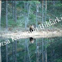 Okb_RB10.jpg