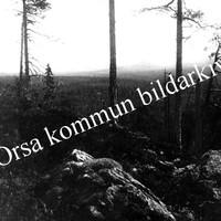 Okb_402.jpg