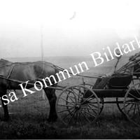 Okb_31332.jpg