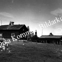 Okb_3939.jpg