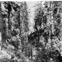Okb_1851.jpg