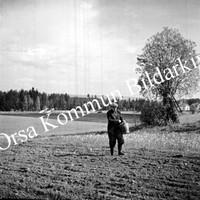 Okb_35622.jpg