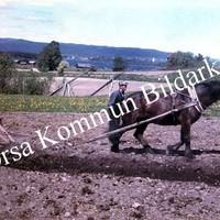 Okb_36526.jpg