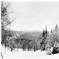 Okb_1885.jpg
