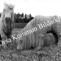 Okb_26192.jpg