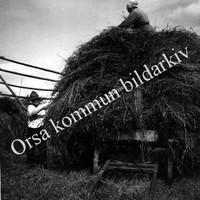 Okb_283.jpg