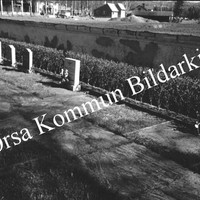 Okb_5573.jpg