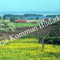 Okb_BN344.jpg