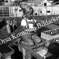 Okb_35109.jpg