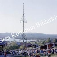 Okb_BN238.jpg