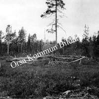 Okb_1810.jpg