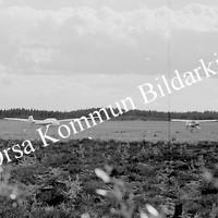 Okb_6136.jpg
