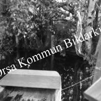 Okb_6254.jpg