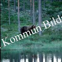 Okb_RB11.jpg
