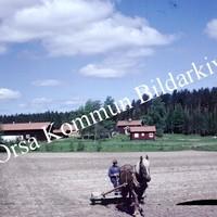 Okb_BN555.jpg