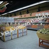 Okb_Hoff263.jpg