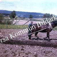 Okb_36439.jpg