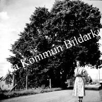 Okb_Ebj42.jpg