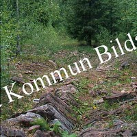 Okb_SEK161.jpg