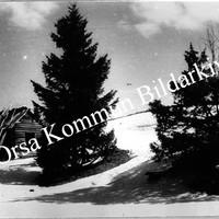 Okb_990.jpg
