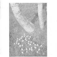 1935 - Nr 02.jpg