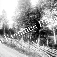 Okb_665.jpg