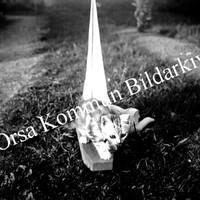 Okb_RMH12.jpg