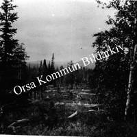 Okb_1793.jpg