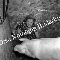 Okb_GG667.jpg