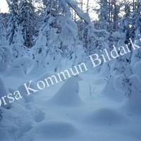 Okb_Has448.jpg