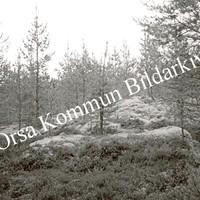 Okb_32091.jpg