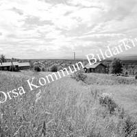 Okb_9511.jpg