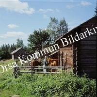 Okb_BN103.jpg