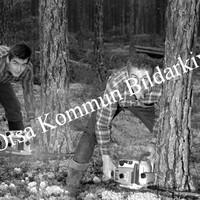 Okb_Hoff253.jpg