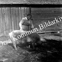 Okb_BEH29.jpg