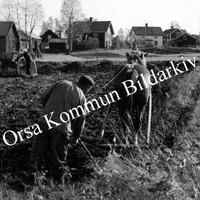 Okb_3224.jpg
