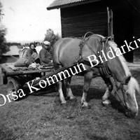 Okb_36428.jpg