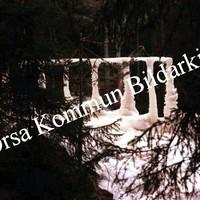 Okb_MS305.jpg