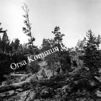 Okb_1821.jpg